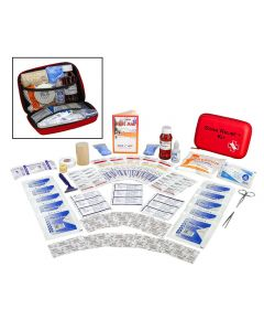 Sting Relief+ Kit - Complete Package